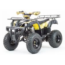 Квадроцикл Motoland ADVENTURE 250